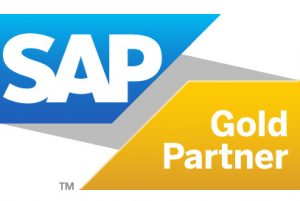 SAP Gold Partner Ice Consultants